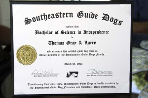Tommy and Larry's Graduation Certificate.